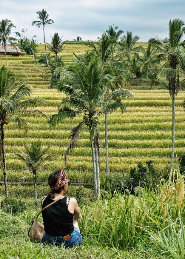 Wolkenkuckucksheim_Reisterrassen_Bali